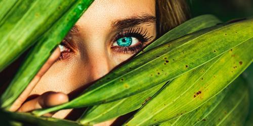 5 ingredientes para mudar sua rotina de beleza